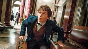 'Fantastic Beasts' Will Be Five-Movie Series, Not a Trilogy