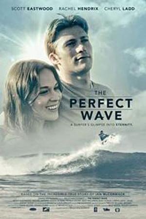 The Perfect Wave poster
