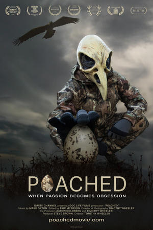 Poached poster