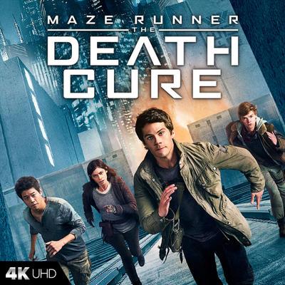 Maze Runner The Death Cure Fandango
