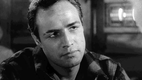 On the Waterfront: Trailer 1