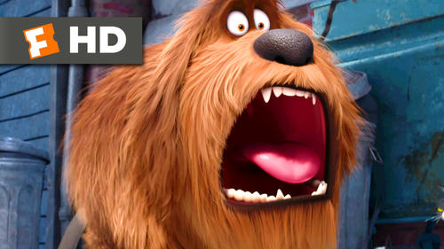 The Secret Life Of Pets: Trailer 1