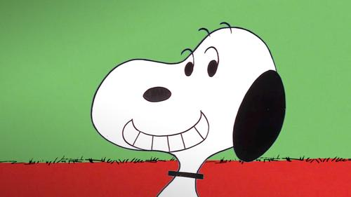 Snoopy, Come Home: Trailer 1