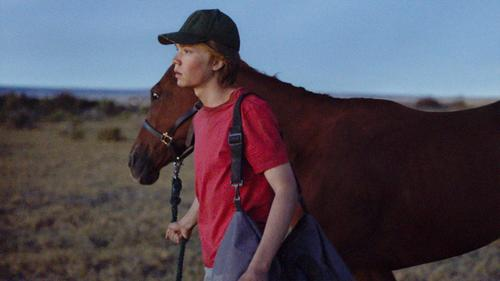 Lean on Pete: Trailer 1