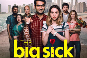 Image result for the big sick movie
