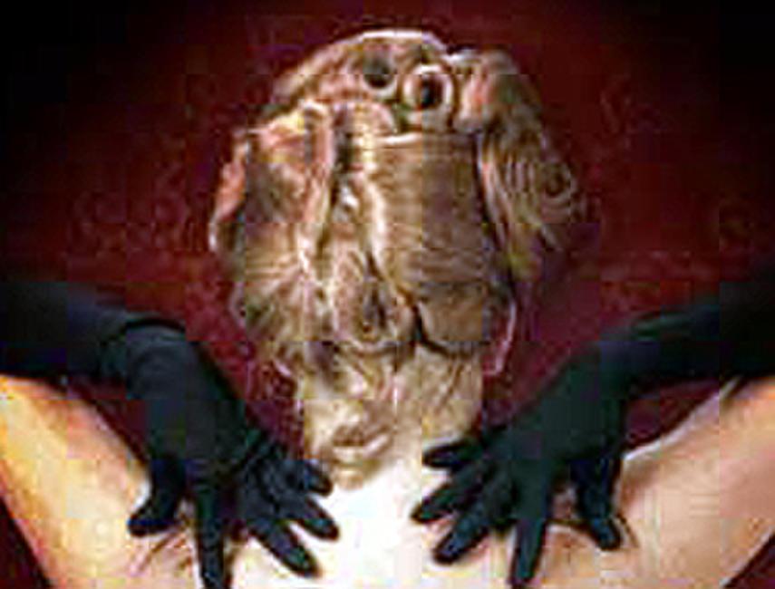 Psychopathia Sexualis Photos + Posters