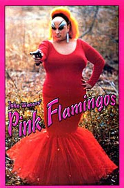 Pink Flamingos Photos + Posters