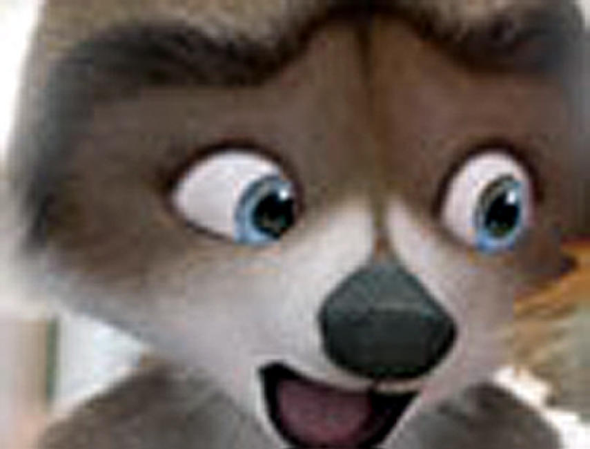Over the Hedge Photos + Posters