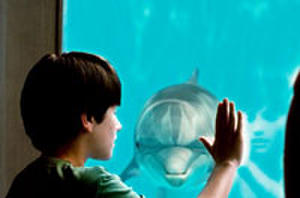 The Charming 'Dolphin Tale' Inspires... But Inspires What?