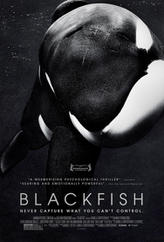 Blackfish showtimes and tickets