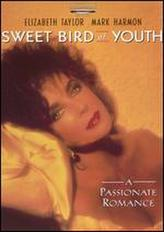 Sweet Bird of Youth (1989) showtimes and tickets