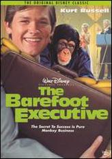 The Barefoot Executive showtimes and tickets