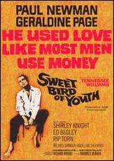 Sweet Bird of Youth showtimes and tickets