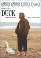 Duck showtimes and tickets