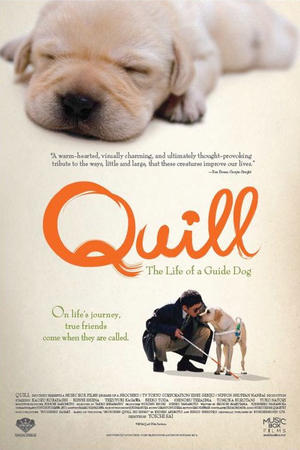 "Poster art for ""Quill: The Life of a Guide Dog."""