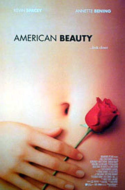 American Beauty Photos + Posters