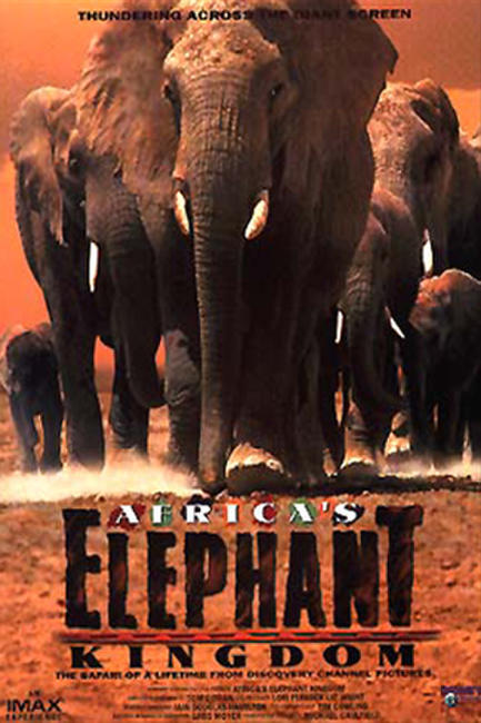 Africa's Elephant Kingdom Photos + Posters