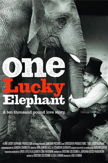 One Lucky Elephant Photos + Posters