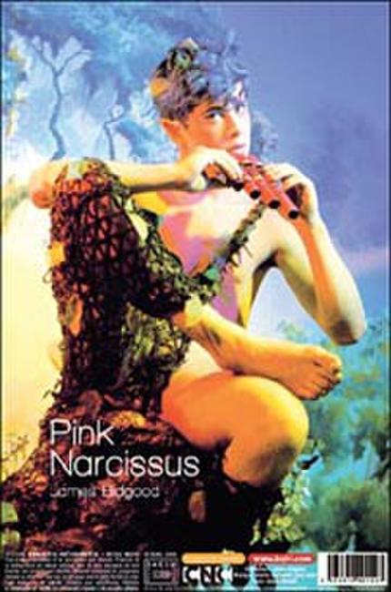 Pink Narcissus Photos + Posters