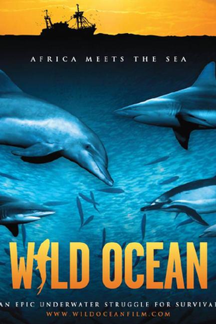 Wild Ocean Photos + Posters