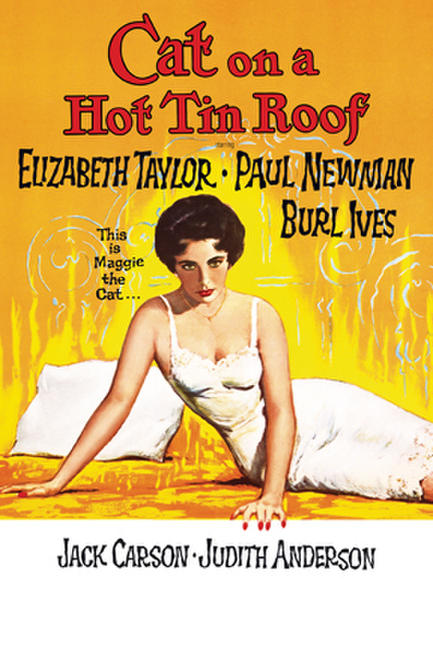 Cat on a Hot Tin Roof (1958) Photos + Posters