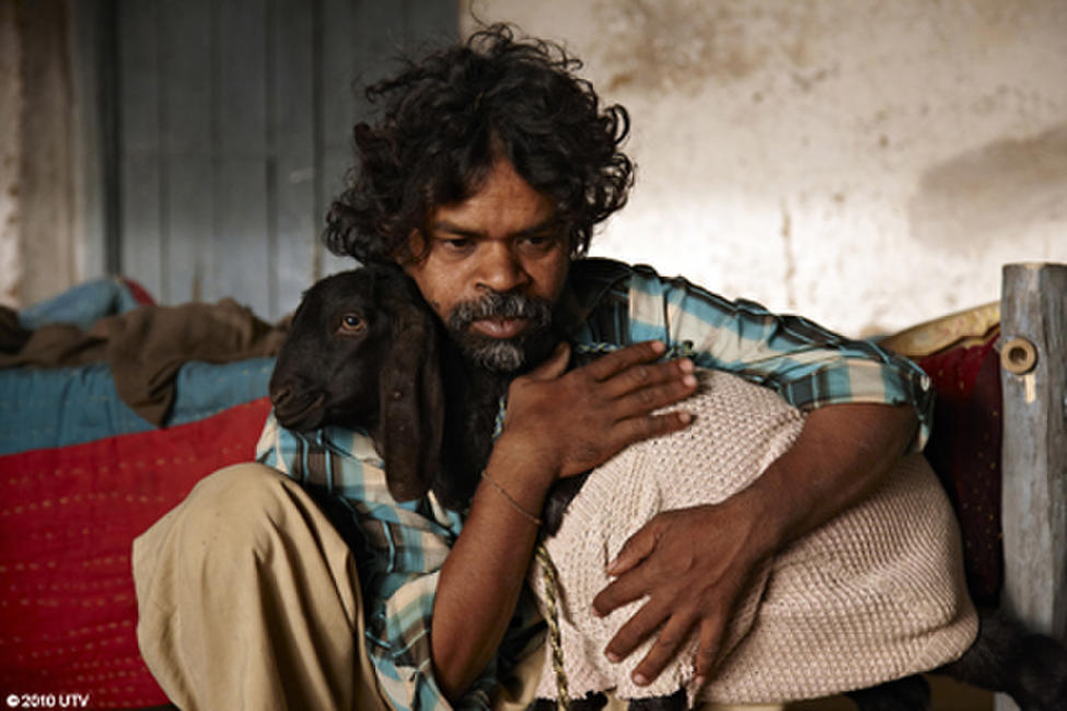 Peepli Live Photos + Posters