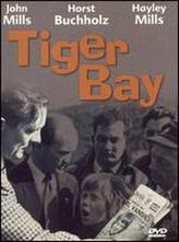 Tiger Bay showtimes and tickets