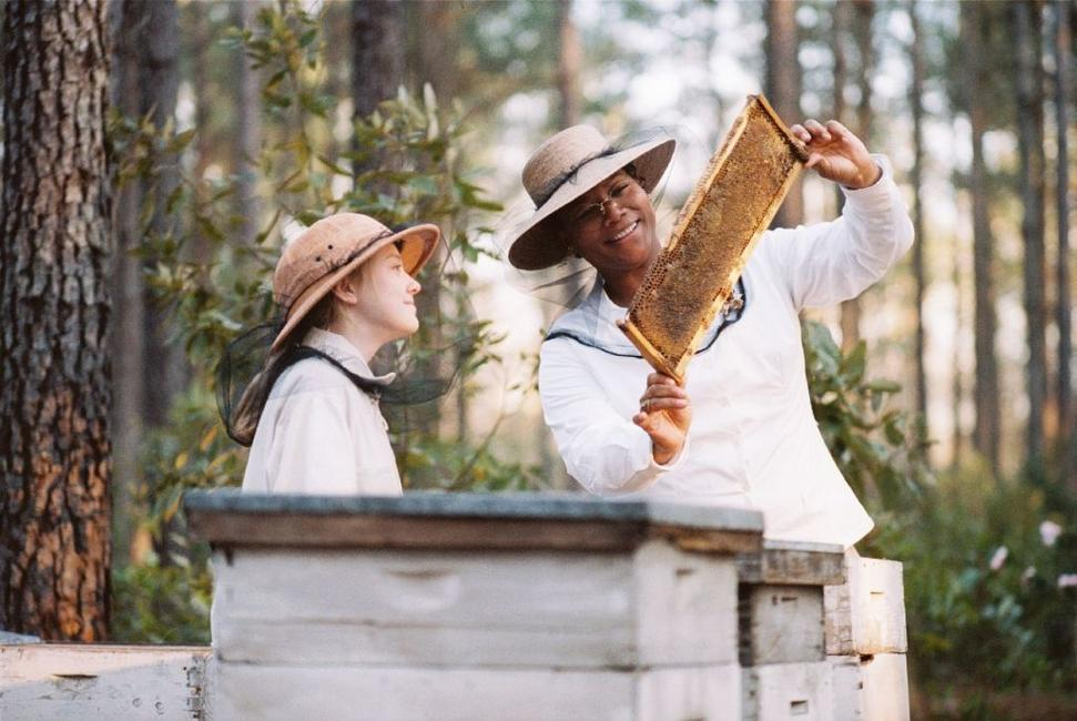The Secret Life of Bees (2008) Movie Photos and Stills - Fandango