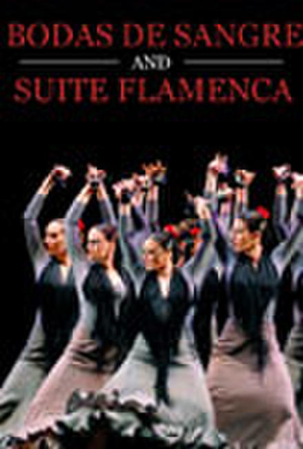 BODA de SANGRE/SUITE FLAMENCA Photos + Posters