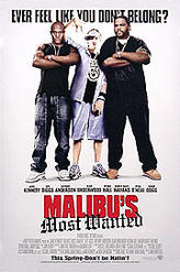 Malibu's Most Wanted showtimes and tickets