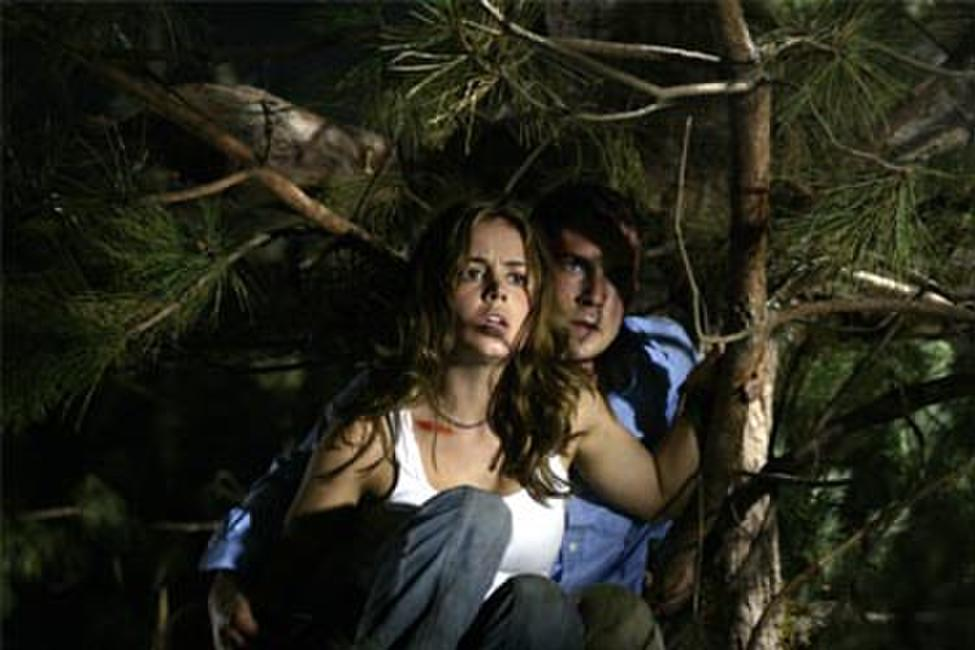 Wrong Turn Photos + Posters