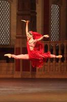 La Bayadere - Bolshoi Ballet (2014)
