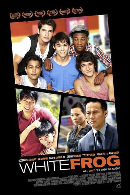 White Frog Photos + Posters