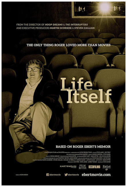 LIFE ITSELF/STEVIE Photos + Posters