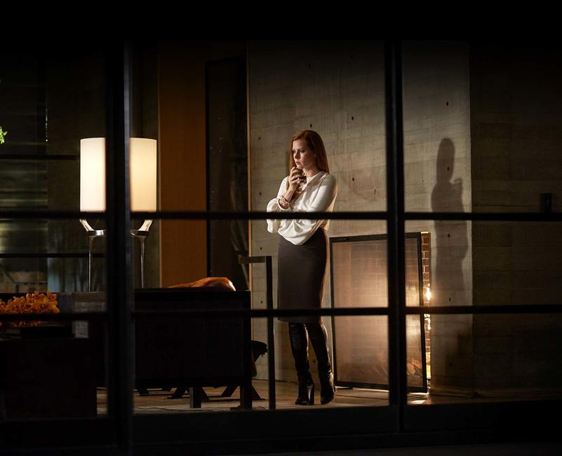 Nocturnal Animals Photos + Posters
