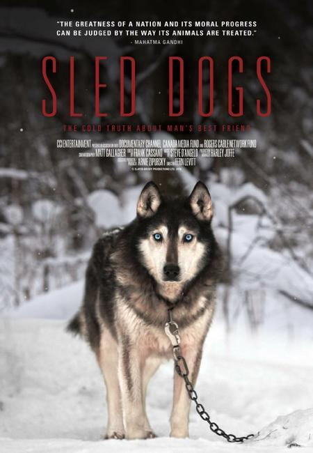 Sled Dogs Photos + Posters