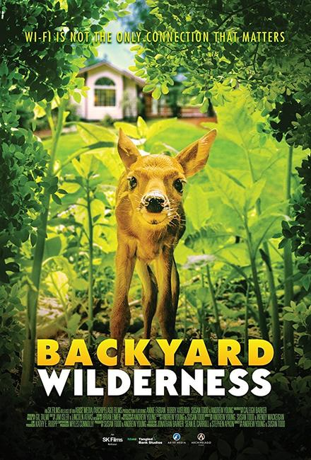 Backyard Wilderness Photos + Posters