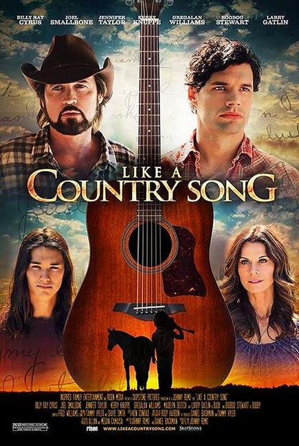 Like a Country Song Photos + Posters