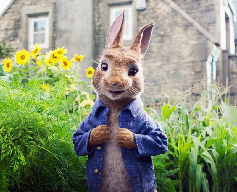 Peter Rabbit Photos + Posters