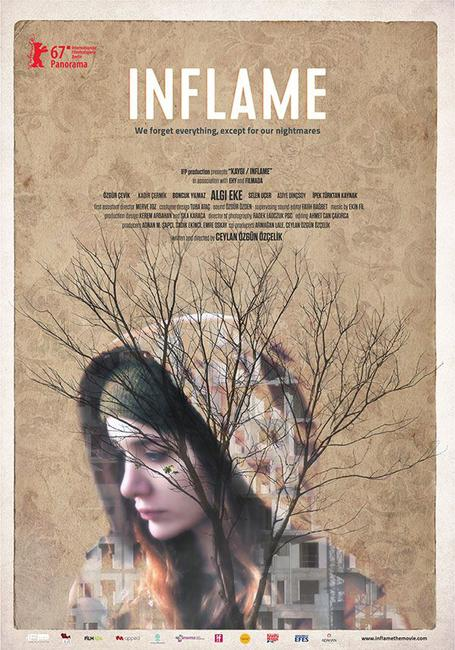 Inflame Photos + Posters