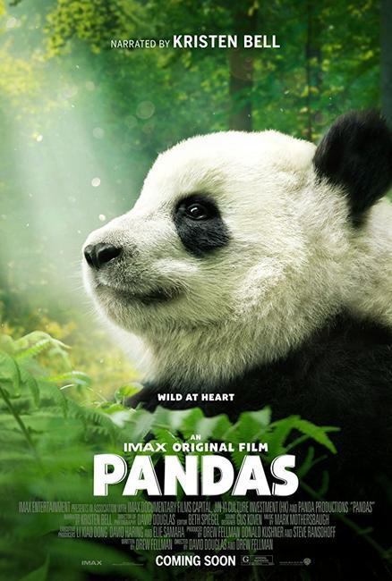 Pandas Photos + Posters