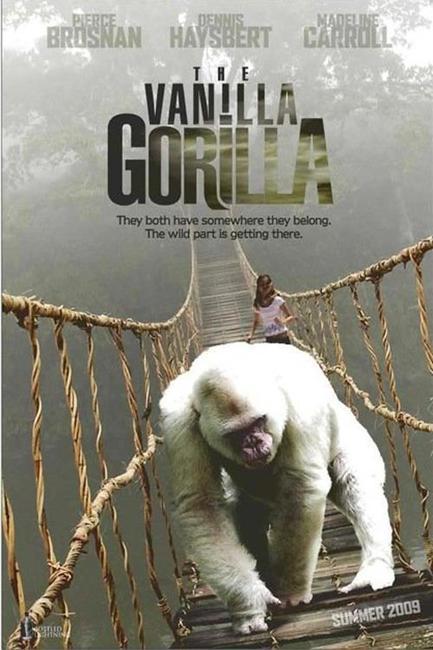 Vanilla Gorilla Photos + Posters