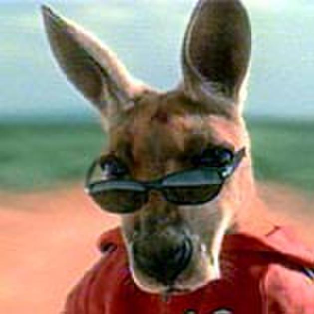 Kangaroo Jack (2003) Movie Photos and Stills - Fandango