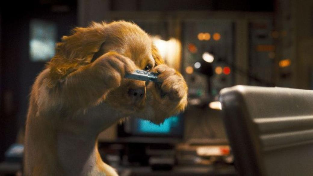 Cats & Dogs: The Revenge of Kitty Galore Photos + Posters
