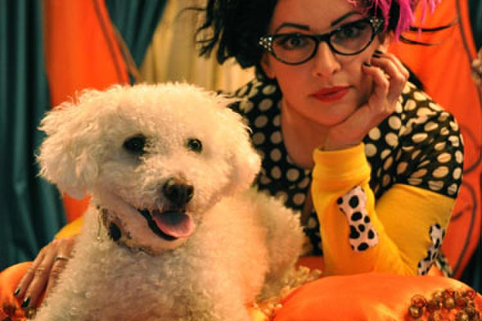 Doggie B Photos + Posters