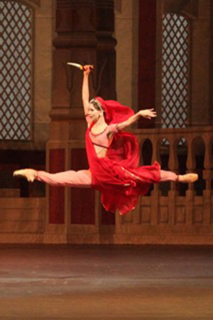 La Bayadere - Bolshoi Ballet (2014) Photos + Posters