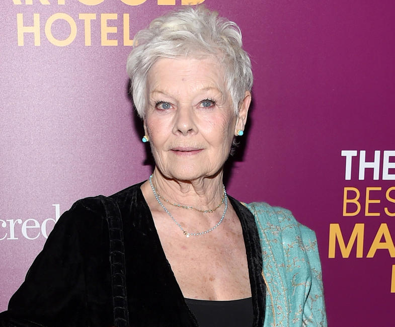 The Second Best Exotic Marigold Hotel Special Event Photos