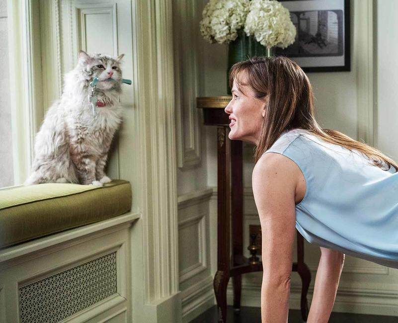Nine Lives  Photos + Posters