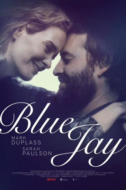 Blue Jay Photos + Posters