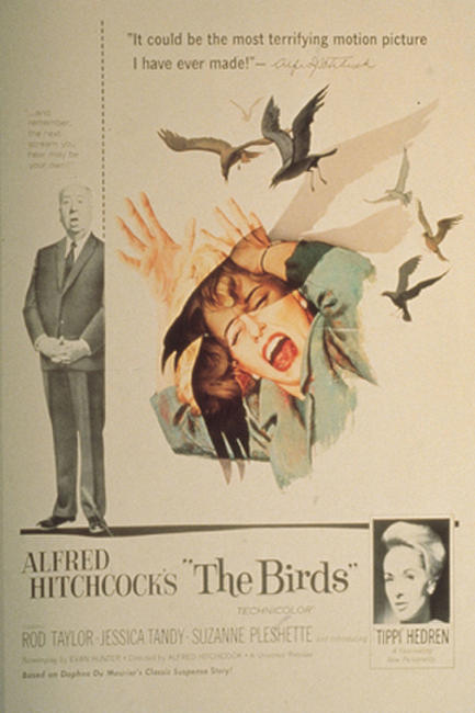 The Birds (1963) Photos + Posters